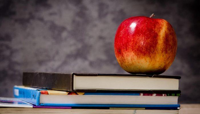 Back to School Organization Tips